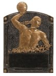 Legends of Fame Award -Water Polo Male  Water Polo Trophy Awards